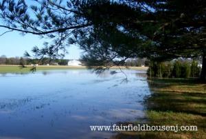 Flooded Back Field