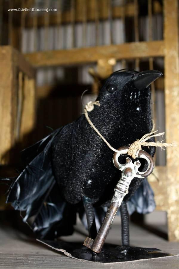 Escaped Crow