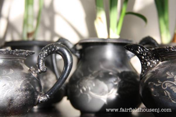 paperwhite pots